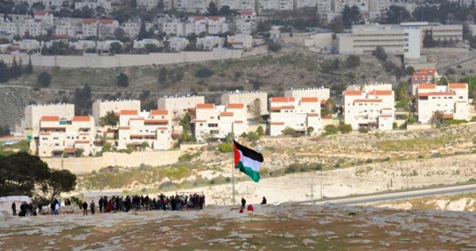 Israeli settlers raze Palestinian lands in al-Khalil