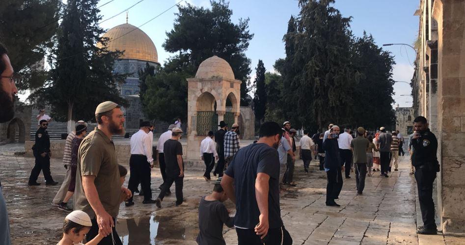Dozens of Jewish settlers defile Aqsa Mosque