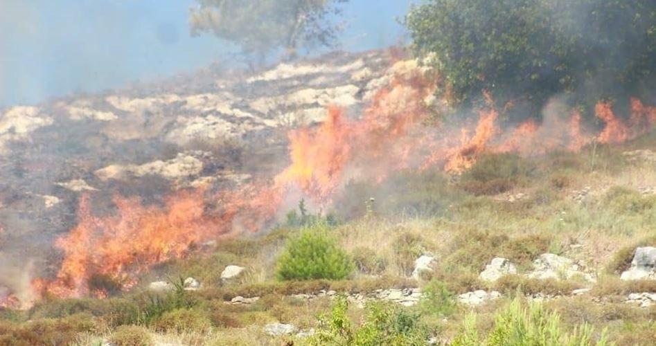 settler arson