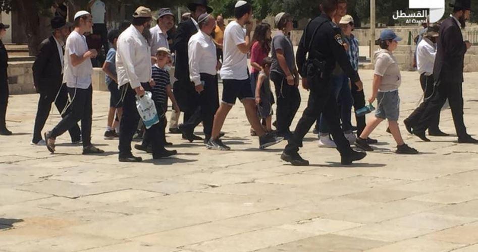 jews defile Aqsa